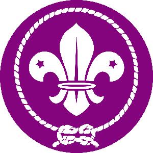 Logotyp WOSM